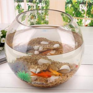 ガラス製 ラウンド 透明 ボウル 球 花瓶 魚 水槽