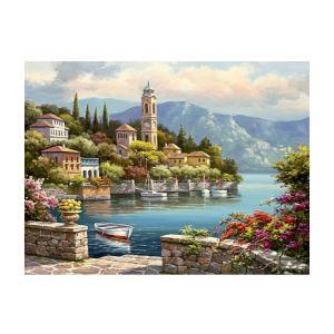 全14様式選ぶ デジタル油絵 数字 キャンバス 壁画 アートワーク 絵画 塗り絵 手塗り DIY絵 手作り 贈り物 - 様式1