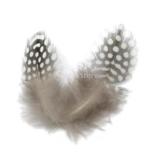 5〜10センチメートル自然モルモット鶏の羽の鶏の羽を染色50pcsのロット|stk-shop
