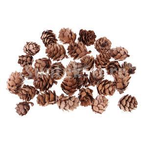 飾り パインコーン 松ぼっくり 自然 デコレーション クリスマス DIYの装飾  約30個|stk-shop