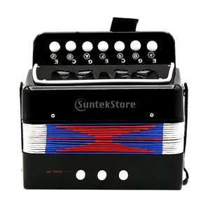 Fenteer アコーディオン 子供 楽器玩具 ピアノ アコーディオン 全3色 - 黒|stk-shop
