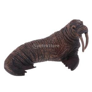 説明: シーライフクリーチャーソリッドセイラー動物モデルホームオーナメントキッズおもちゃ。 これはあ...