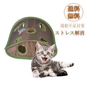 説明: あなたの猫の自然本能を狩り、追いかけ、彼の獲物を喚起するあなたの猫の本能を刺激するボールとマ...
