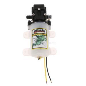 ミニ 水圧ポンプ ダイヤフラム 2L/min 58PSI DV12V  セルフプライミング