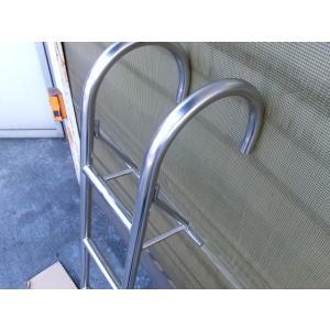 UD クオン / ビックサム 標準ルーフ用 キャブバックハシゴ ステンレス stn-art-g-1