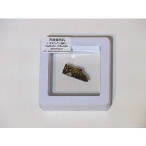 セイムチャン隕石(石鉄質隕石・パラサイト隕石)|stonesclub