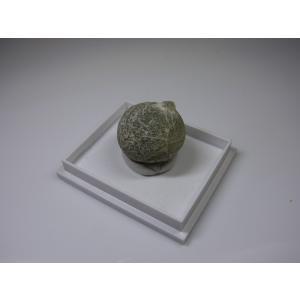 マリ産 葡萄石(プレーナイト) Prehnite|stonesclub