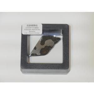 セリコ隕石(石鉄質隕石・パラサイト隕石)|stonesclub