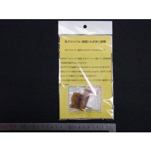 虫入りコパル(樹脂)磨きに挑戦 子供用|stonesclub