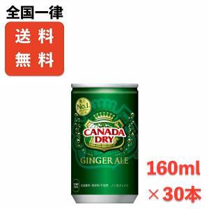 送料無料 カナダドライジンジャーエール 160ml缶×30本 メーカー直送|store-makotogokoro