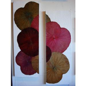 蓮の葉アート ロータスアートフレーム 壁飾り 和風 複合画|store-monsoon