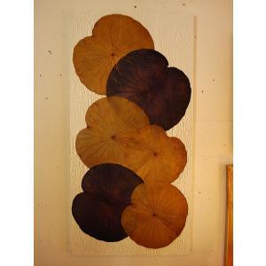 蓮の葉アート ロータスアートフレーム 壁飾り 和モダン 和風 |store-monsoon