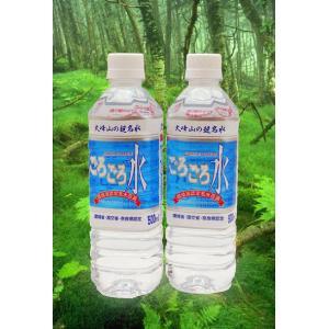 安心・安全 大峰山の超名水「ごろごろ水」 500ml×20本【送料無料】【東北、北海道、沖縄への配送は追加送料が発生する場合があります。】|store-naratv