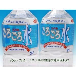 安心・安全 大峰山の超名水「ごろごろ水」 2L×6本【送料無料】【東北、北海道、沖縄への配送は追加送料が発生する場合があります。】|store-naratv