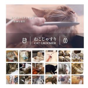 ねこじゃすり  正規販売店 やすり ワタオカ 猫用 日本製