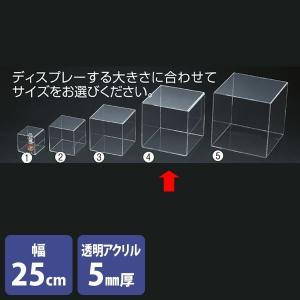 アクリルボックス 4面 透明 25cm角 コレクションケース 展示|storeplan