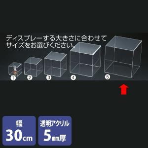アクリルボックス 4面 透明 30cm角 コレクションケース 展示|storeplan