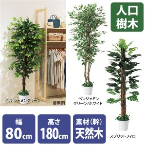 人工樹木 リアル 高さ180cm ベンジャミングリーン スプリットフィロ storeplan