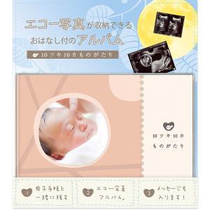 手作りアルバム絵本 10ツキ10カものがたり 出産までの十月十日の記録 マタニティー エコー写真 ア...