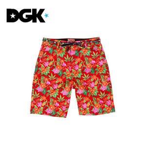 DGK PERMANENT VACATION CHiNO SHORTS ディージーケー ショートパンツ ショーツ 14m|stormy-japan