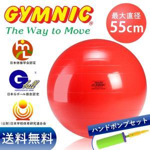 ギムニク バランスボール 55cm レッド+ダブルアクションポンプ セット stretchpole-shop