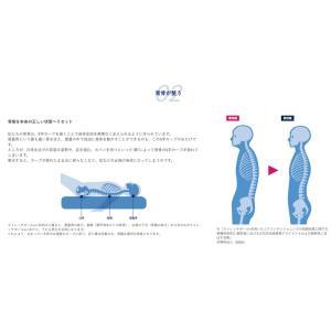 ストレッチポールEX(ネイビー)【メーカー公式】株式会社LPN|stretchpole|05