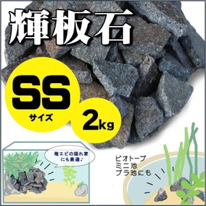 アクアリウム 石 輝板石 SSサイズ 2kg 国産品