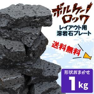 レイアウト用溶岩石プレート <ボルケーノロック> 1kg 積み重ねるだけでダイナミックなレイアウトが...