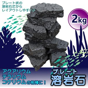 アクアリウム 石 溶岩石 レイアウト ボルケーノロック 2kg