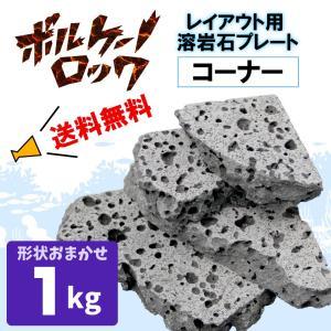 アクアリウム 石 溶岩石 レイアウト コーナー ボルケーノロック 1kg