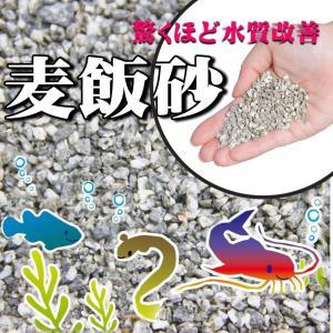 アクアリウム 水槽用底砂 麦飯砂 洗って入れるだけでぴったり 30cm水槽で3センチ/45cm水槽で...