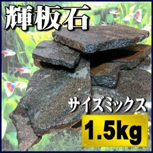アクアリウム 石 輝板石 サイズミックス 1.5kg 国産品