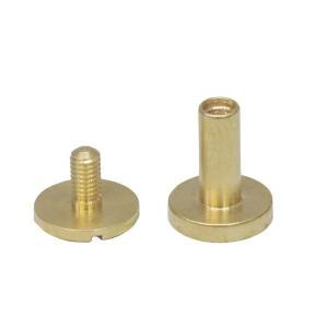 真鍮 生地 組ネジ Mサイズ シカゴスクリュー 螺子 ネジ式 マイナス 金具 パーツ 金色 古美金 キーホルダーパーツ|studio-ichi