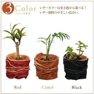 ヌメ革 レザー ポット 鉢 カバー プランター Sサイズ|studio-ichi|02