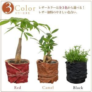 ヌメ革 レザー ポット 鉢 カバー プランター Mサイズ studio-ichi 02
