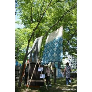 暖簾 のれん N-5223 本麻 藍染 半間 90x130cm|studio-mofusa