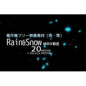 著作権フリー映像素材/商用利用可/雨・雪20ムービー収録/ハイビジョン画質