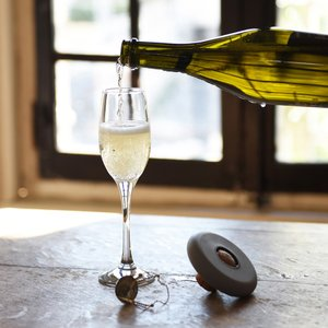ドイツ製 シャンパンオープナー HOOPLA グレー|studiolo
