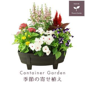 旬のお花がたっぷり!玄関やベランダに最適!置くだけで周りを華やかに彩ります!  季節のお花をオシャレ...