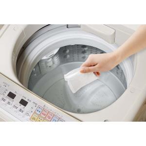 アーネスト 洗浄剤 ランドリー 洗濯槽 キレイサッパリ 小分けパック 12個入 A-76295