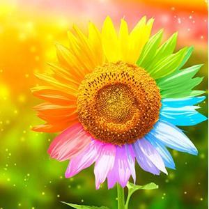Tubame stall 6 向日葵 ダイアモンドビーズ絵画 刺繍キット 5D ダイアモンドカラーストーン 刺繍キット クロスステッチ刺繍キット DI|stylecolorstore