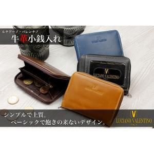 カードケース メンズ レディース 牛革 メンズ LUCIANO VALENTINO スタンダード パスケース 付き コインケース 小銭入れ LT-GS 11SP