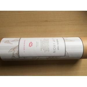 ヘアアイロン 海外対応 KINUJO ストレートヘアーアイロン LIP IRON リップアイロン コードレスアイロン DS058の商品画像|ナビ
