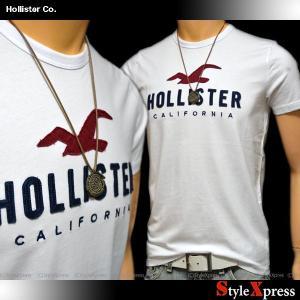 ホリスター Hollister Tシャツ メンズ|stylexpress