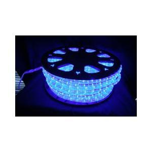 SUCCUL LEDチューブライト(ロープライト) ブルー 青 2芯タイプ 100m 直径10mm 3000球 一ヶ月保証|succul