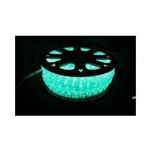 SUCCUL LEDチューブライト(ロープライト) グリーン 緑 2芯タイプ 100m 直径10mm 3000球 一ヶ月保証|succul
