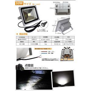 LED投光器 30W 昼光色 ACプラグ付 1.5M配線 防水 長寿命 看板灯 集魚灯 作業灯に/家庭用コンセントでOK SUCCUL|succul|05