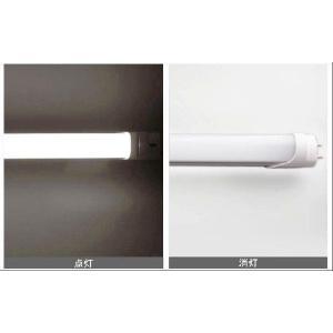 SUCCUL 直管LED蛍光灯580mm 昼光色 20W型 9W PSE取得品 グロー式工事不要 1年保証付 3本セット 送料無料|succul|05