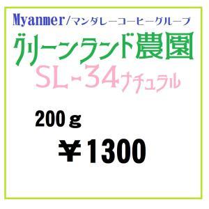 モーテート農園200g=ミャンマー産初入荷、高品質アジア銘柄登場!|sudacoffee