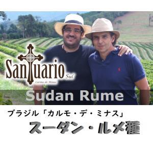 カルモ・デ・ミナスとサンチュアリオ農園の強力コラボ=「スーダン・ルメ種」 200g sudacoffee